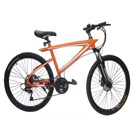 Xe đạp thể thao LX-520