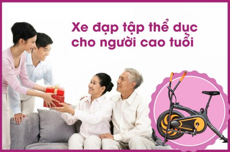 Xe đạp tập thể dục cho người già, người tai biến tại Thanh Hóa